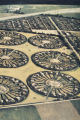 Aerial photograph of radial settlement patterns within a green belt, the slide was labeled as...