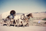 """Navajo Wagon and Horses"""