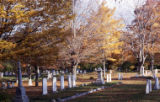Graveyard in autumn