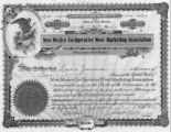 Stock Certificate for New Mexico Co-Operative Wool Marketing Association