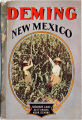 Deming, New Mexico brochure