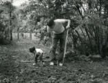 Albert Martinez teaching his son to plant corn, 1986