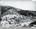 Winter View of Chloride N.M. ca. 1890