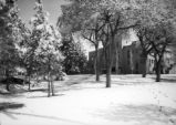 Hodgin Hall - exterior - winter in Tight Grove