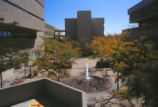 Biomedical Research Building - fountain in plaza