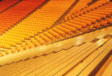 University Arena - The Pit - interior - bleachers and seats