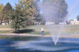 Duck Pond - maintenance worker cleaning