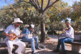 Duck Pond - concert - three musicians