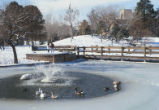 Duck Pond - looking east at Scholes Hall in winter