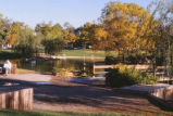 Duck Pond - looking north from south side of bridge