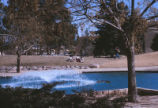 Duck Pond - aerating fountain