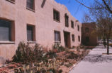 Bandelier Hall West - cactus garden