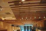 Fine Arts Center - interior - ceiling and light fixtures