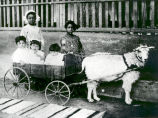 CONCHA,REYNALDA, AND FRANK ORTIZ DE PINO IN WAGON, BLUEBELL AND LUCYJACKSON