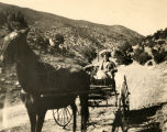 Carrie Tingley in a horse and buggy