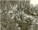 Governor and Mrs. Miles in the dahlia beds at the Governors Mansion, Santa Fe, New Mexico