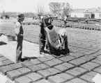 Workers making adobe bricks, New Mexico