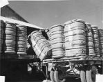Loading bales of cotton from gin mill near Las Cruces, New Mexico