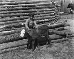Young boy with calf near Penasco, New Mexico