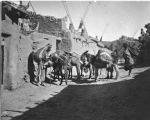 Burros on street, Zuni Pueblo, New Mexico