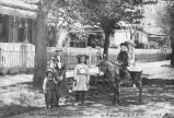 Children and burro, Washington Avenue, Las Vegas, New Mexico