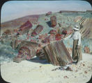 Woman in Petrified Forest National Park, Arizona