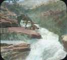 Man and horse drinking from Beaver Creek, Navajo Mountain, Utah