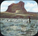Navajo herding sheep, Toad Rock, Canyon de Chelly, New Mexico