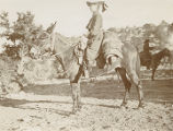 Woman riding mule with bed roll, New Mexico