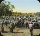 Horse corral, Conjilone Camp, New Mexico