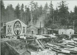 Kwakiutl homes, Vancouver Island, British Columbia