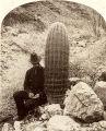 Man beside barrel cactus, Grand Canyon, Arizona