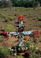 """Red Hearts and Flowers"", I-25 South; Santa Fe, New Mexico"