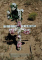 """Newspaper and Flower Cross"", Frontage Road, I-25 South at Lagunitas; Santa Fe, New..."