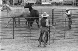 """No Pastime for Old Men"" rodeo series, New Mexico"