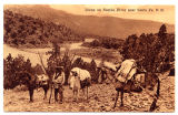 Man with pack animals on Nambe River near Santa Fe, New Mexico