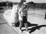 Jackie Sharber walks a South American Alpaca at Crystal Mesa Farms, New Mexico