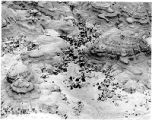 Aerial view of Bisti Badlands, McKinley County, New Mexico