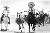 Charros las Alazanas riders demonstrating horsemanship, Santa Fe, New Mexico