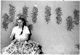 Woman stringing chile ristras during Harvest Festival, El Rancho de las Golondrinas, Santa Fe, New...