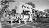 Horse and buggy in front of Palace of the Governors, Santa Fe, New Mexico