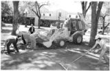 Parks workers take up flagstone and put down sod on the Plaza, Santa Fe