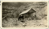 People and horse at a cabin in a canyon