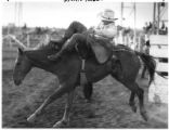Bronco rider Jim Jones competes in rodeo, Santa Fe, New Mexico
