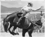Bronco rider at rodeo, Santa Fe, New Mexico