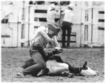 Rodeo competitor ties up a calf, Santa Fe, New Mexico