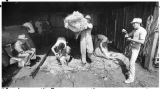 Workers shear sheep, Santa Fe, New Mexico