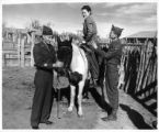 GIs help a girl onto a horse, USO Club tour, La Jara Ranch?, New Mexico