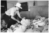 Municipal Judge Tom Fiorina sorting through Thanksgiving turkeys and donated food, Santa Fe, New...