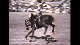 Rodeos in New Mexico, film compilation